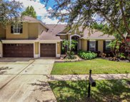 19237 Autumn Woods Avenue, Tampa image