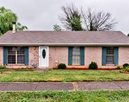 7301 Chestnut Tree Ln, Louisville image