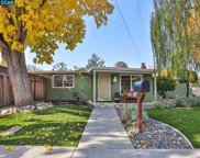 1002 Santa Cruz Dr, Pleasant Hill image