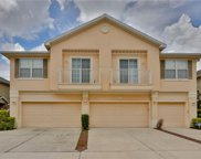 6842 Breezy Palm Drive, Riverview image