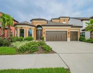 11002 Charmwood Drive, Riverview image