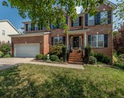 4383  Sunset Rose Drive, Fort Mill image