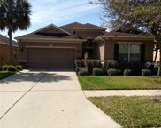 17315 Chelsea Downs Circle, Lithia image
