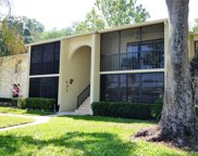 1441 Pine Glen Lane Unit F1, Tarpon Springs image