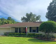 4306 Autumn Leaves Drive, Tampa image