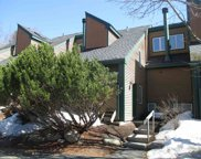 42 Tyler Spring Way Unit #8, Waterville Valley image