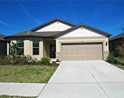 15565 Sword Lily Place, Brooksville image