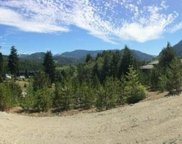 602 Scout Lake  Rd, Gold River image