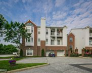 1305 CRANESBILL COURT Unit #302, Belcamp image
