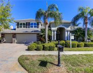 10215 Golden Eagle Drive, Seminole image