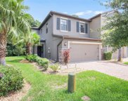 17235 Old Tobacco Road, Lutz image