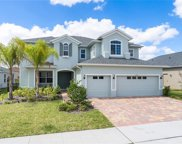 16737 Meadows Street, Clermont image