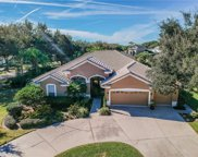 5203 Troon Place, Valrico image