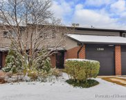1549 Blackburn Street, Wheaton image