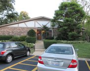 9S110 Lake Drive Unit 109, Willowbrook image