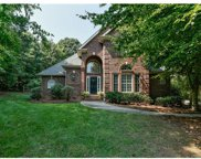 807  Coolwater Court, Fort Mill image