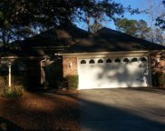 3107 Michele Court, Little River image