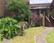 51-636 Kamehameha Highway Unit 414, Kaaawa image