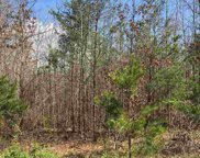 1205 Griffin Mill Road, Easley image