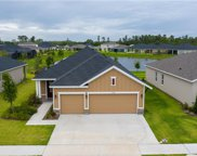 17969 Passionflower Circle, Clermont image