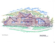 885 Angels View Way, Steamboat Springs image
