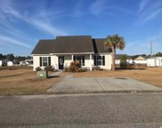 355 Cherry Buck Trail, Conway image
