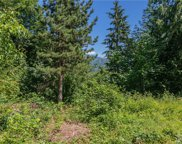 5768 Mount Baker Hwy, Deming image