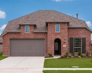 1281 Carlsbad, Forney image