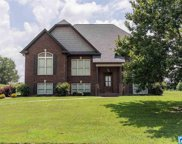 515 Willow Branch Rd, Odenville image
