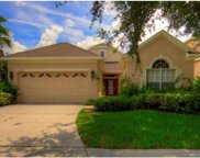10244 Evergreen Hill Drive, Tampa image