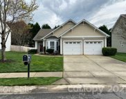 313 Sand Paver  Way, Fort Mill image
