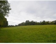 Lot 2.1 Fred White Road, Cochecton image