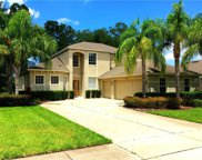 5472 Rishley Run Way, Mount Dora image