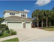 6606 Rosy Barb Court, Lakewood Ranch image
