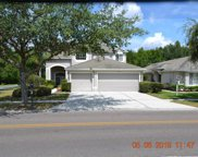 18110 Sandy Pointe Drive, Tampa image