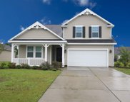 1004 Blue Hole Court, Conway image