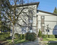 202 Westhill Place Unit 243, Port Moody image