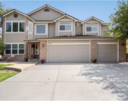 7487 Bluefox Court, Lone Tree image