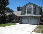 3211 Pine Forest Drive, Palm Harbor image