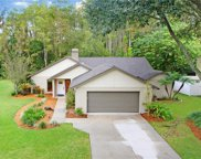 12107 Wasatch Court, Tampa image