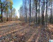 Florida Road Unit 20 acres, Pell City image