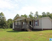 288 Mountain Terrace Dr, Odenville image
