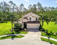 11295 Lithgow Ln, Fort Myers image