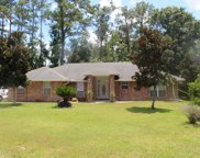 15590 MOSS HOLLOW DR, Jacksonville image