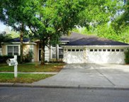 10224 Shadow Branch Drive, Tampa image