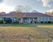 100 Little Fawn Trail, Toney image