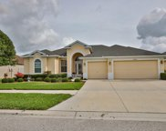 10824 Rockledge View Drive, Riverview image