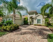 4654 Grand Preserve Place, Palm Harbor image