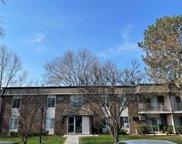 1077 Mill Creek Drive Unit #201, Buffalo Grove image