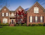 10731 Anglesey  Court, Charlotte image